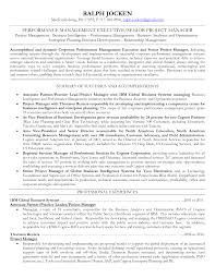 Sample Resume Format It Professional by Profile On A Resume Example Business Representative Sample Resume
