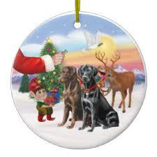 black labrador ornaments keepsake ornaments zazzle