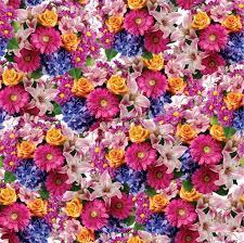 flower pictures to print wallpaper download cucumberpress com