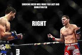 Boxing Memes - ufc memes weed memes