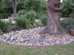 Patio Around Tree Creating A Dry Creek Bed Intro Project