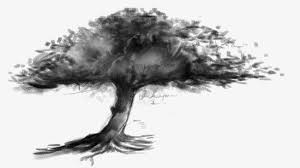 sketch tree sketch shadow trees png image for free download