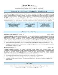 Sample Accountant Resume Essay Topic For 5th Grade Well Written Essay For College