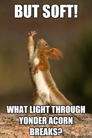 Shakespeare Lyrics Meme - but soft what light through yonder acorn breaks shakespeare