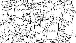 preschool jungle coloring pages free printable jungle animals coloring pages page orangutan home pri