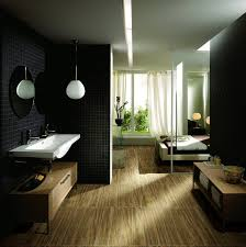 bathroom on pinterest awesome restroom design home design ideas