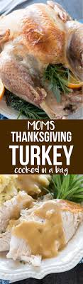 s thanksgiving turkey in a bag for crust
