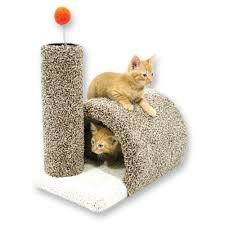 cat furniture cat furniture pets u0026 wild bird at mills fleet farm