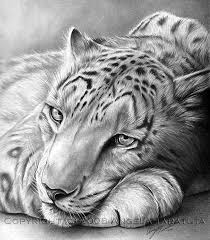 10 best tonal drawings images on drawing drawings and