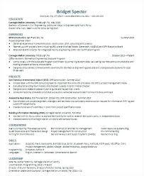 plain text resume template orientation leader resume charming sle plain text resume with
