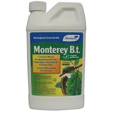 Insecticide For Vegetable Garden by Amazon Com Lawn U0026 Garden Products P Monterey B T Concentrate 32