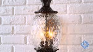 Acclaimlighting Acclaim Lighting Lanai Outdoor Wall Light Bellacor Youtube