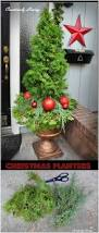 Topiary Planters - 15 creatively festive diy planters that bring a welcoming feel to