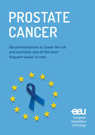 white paper on prostate cancer by european association of urology
