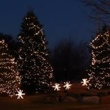 How To Decorate Outdoor Trees With Lights - christmas lighting outdoor light photo gallery