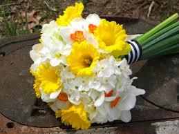 best 25 daffodil wedding flowers ideas on pinterest peonies