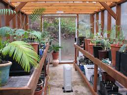 greenhouse ideas 4