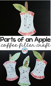 parts of an apple coffee filter craft a dab of glue will do