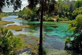 Florida Rivers images Rainbow river florida ocala florida arcadia florida jpg