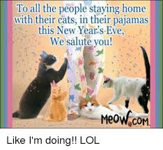 New Home Meme - to all the people staying home with their cats in their pajamas
