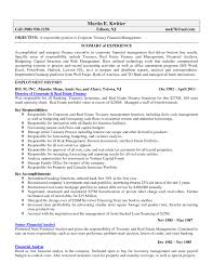 Finance Objective For Resume Printable Summary Of Experience And Employment History For Finance
