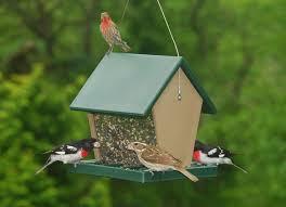 best 25 large bird feeders ideas on diy wine bottle