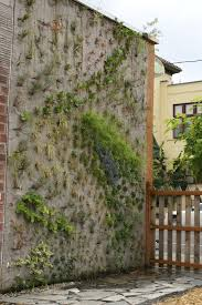 the world u0027s most magnificent vertical gardens concrete