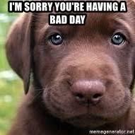 Puppy Face Meme - sad puppy face im sorry mne vse pohuj