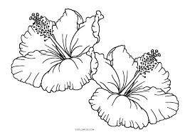 coloring pictures of hibiscus flowers hibiscus flower coloring pages free printable for kids flowers