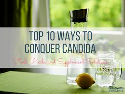 top 10 ways to conquer candida part 2 food herbs and