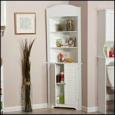 Corner Storage Cabinet For Kitchen Tall Corner Kitchen Cabinet Outofhome