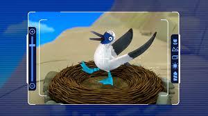 blue footed booby bird paw patrol wiki fandom powered by wikia