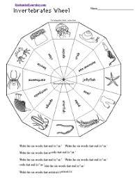 free printable worksheets vertebrates invertebrates invertebrates wheel printable worksheet enchantedlearning com