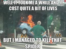 Kill Spider Meme - now honey we all know the only way to kill a spider is fire so i