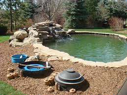 Backyard Swimming Ponds - spray line technologies sprayline technologies koi pond photo
