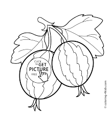 two gooseberries fruits and berries coloring pages for kids