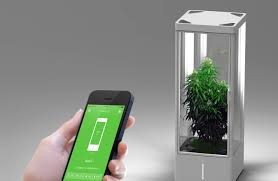 former apple engineer brings you in home plant automation