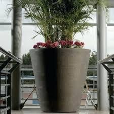 beautiful large indoor planters gallery interior design ideas