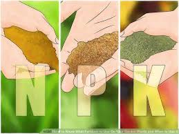 Garden Fertilizer Types - how to know what fertilizer to use on your garden plants and when