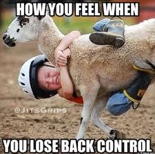 Funny Donkey Memes - 26 funny as hell bjj memes