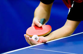 table tennis and ping pong regail d003 table tennis ping pong racket one penhold bat paddle