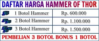 apotek obat hammer of thor asli di palembang archives kamasutra