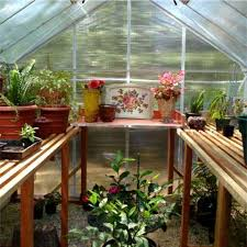 Garden Greenhouse Ideas Elite Greenhouse For Home Arch Greenhouses