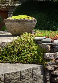 Rock Gardens Green Bay by 10 Garden Ideas To Steal From Provincetown On Cape Cod Gardenista