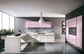pink kitchen ideas pink and violet kitchen design ideas home interiores