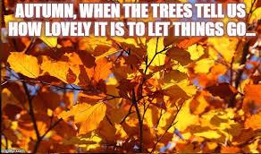 Autumn Memes - taleas comic meme archive