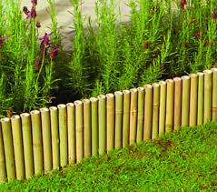 Bamboo Garden Design Ideas Designing Bamboo Garden Landscaping Ideas 13 Extraordinary Bamboo