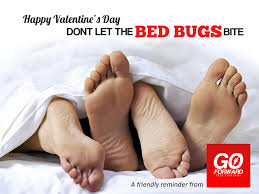 Dont Let The Bed Bugs Bite Happy Valentine U0027s Day Don U0027t Let The Bed Bugs Bite A Friendly