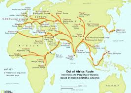 genographic project confirms humans migrated out of africa through