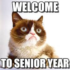 Senior Year Meme - welcome to senior year with your host grumpy cat on memegen